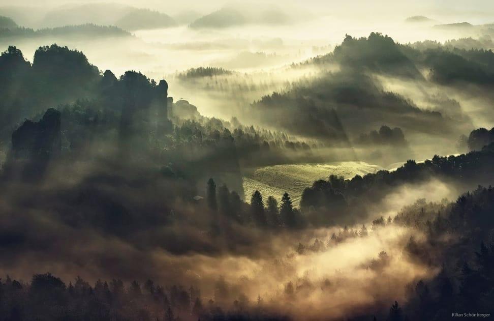 Landscapes - Life Gone Wrong