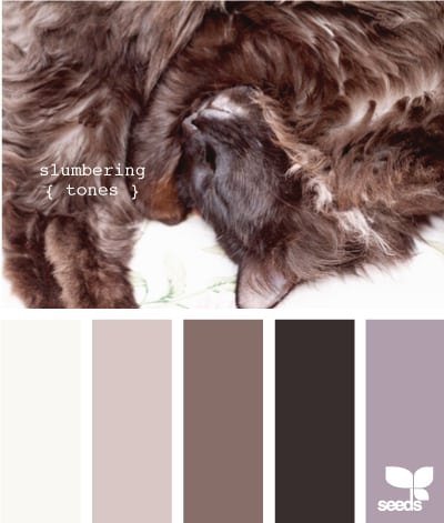 27 Color Palettes Inspired By Cats And Dogs Designbump