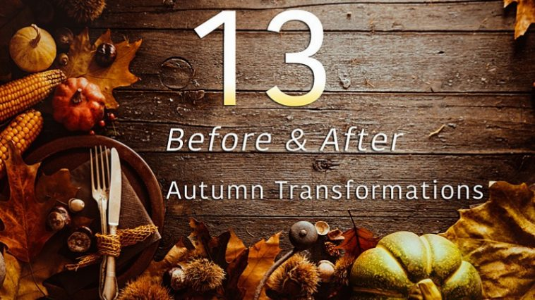 Before and After Autumn Transformations