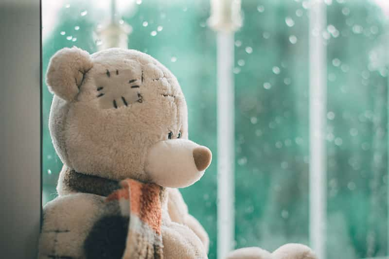 Teddy Bear Images : Thoughtful Bear