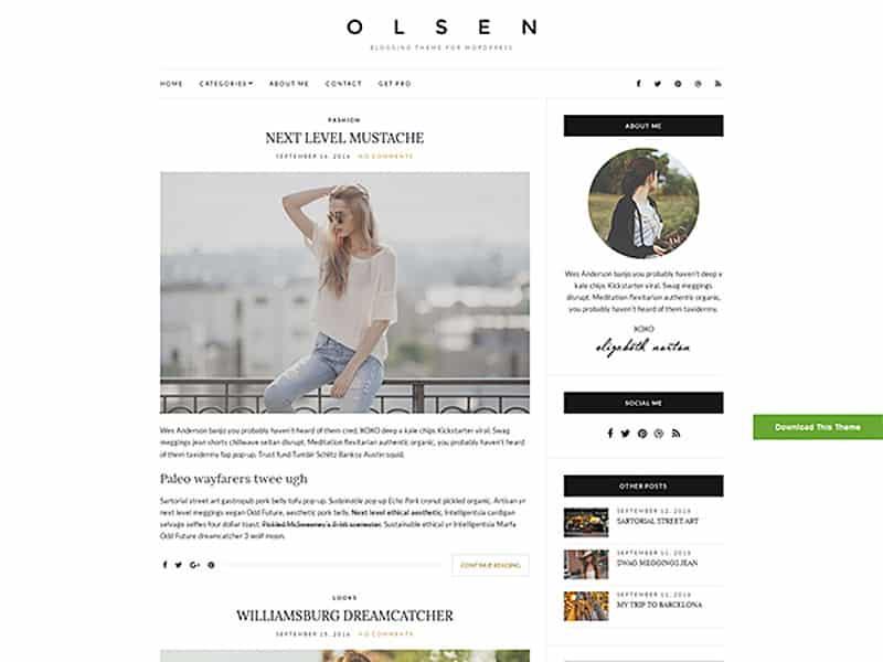 Olsen Light Free WordPress Theme 2017