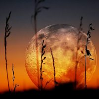Most Amazing Supermoon Events
