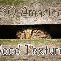 30 Amazing Wood Textures